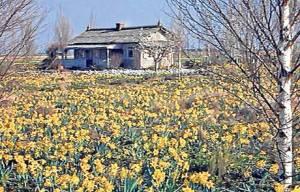 La cabaña de Yuri en Candilichera